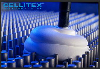 cellitex-latex