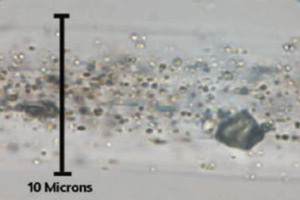 celliant under microscope